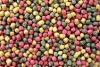 Profi -Futter Mix  Alleinfuttermittel für Koi 6 mm 15 kg
