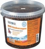 Tripond Seidenraupen - Premium Qualität 5 Liter